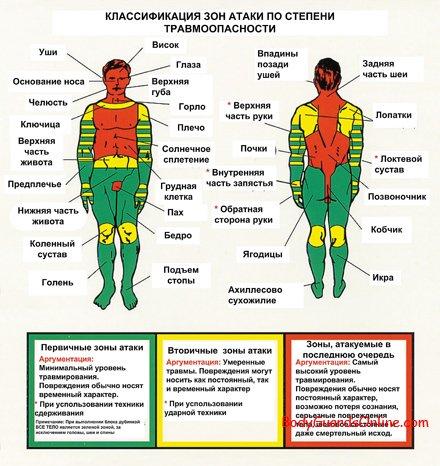 Схема болевых точек тела человека