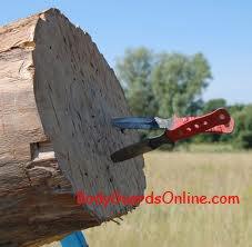 Огляд на тему метання ножа