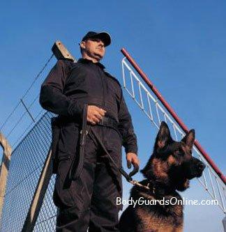 Використання собаки при охороні об'єктів